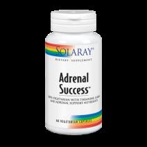 SOLARAY ADRENAL SUCCESS 60 CAPS VEG